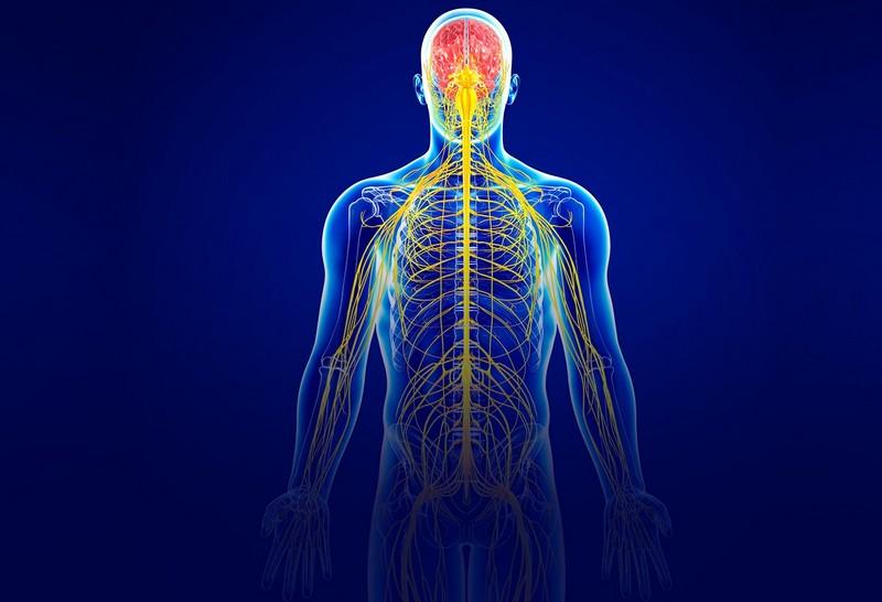 Центр здоров'я Solard - Невралгія - 1